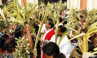 Domingo-de-Ramos-catolicos